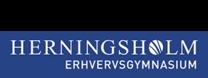 Herningsholm Erhvervsskole